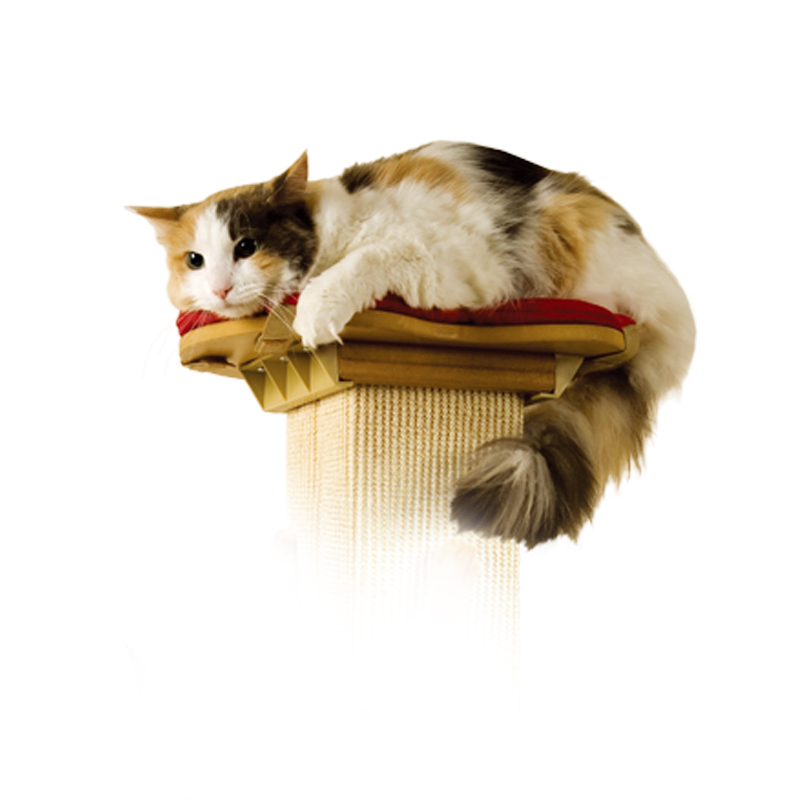 SmartCat Perch for the Ultimate Scratching Post