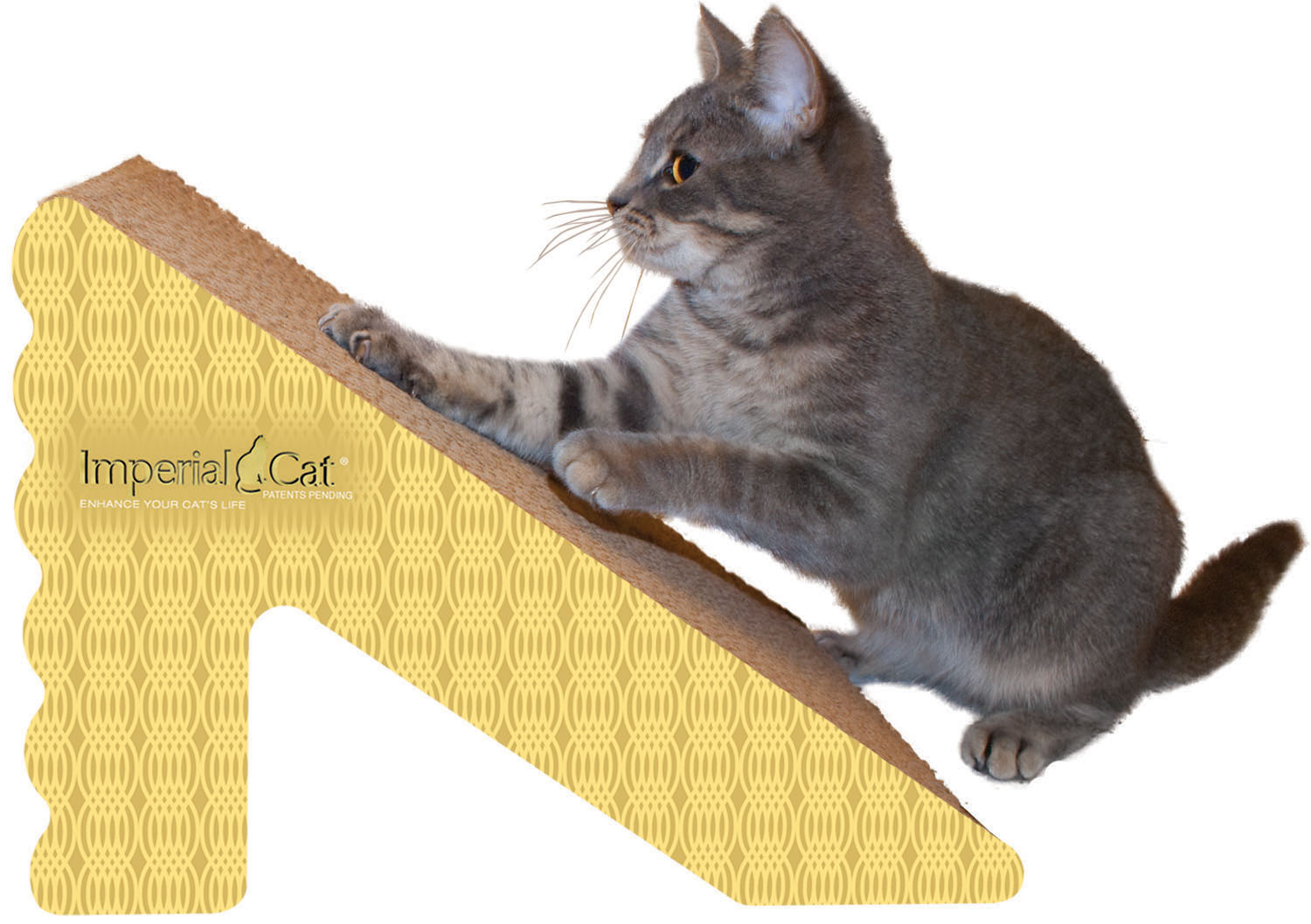 Imperial Cat - Shape Scratchers Rub 'n Ramp